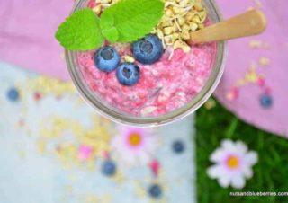 Himbeer Chia Porridge
