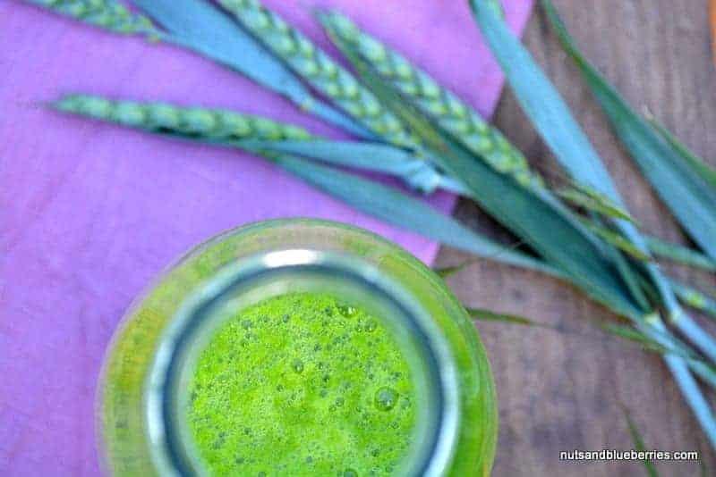 Grüner Ananas Smoothie