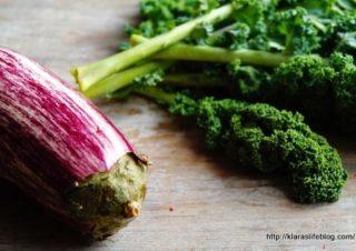 Pflanzen basierte Ernährung – Interview Serie Teil 3
