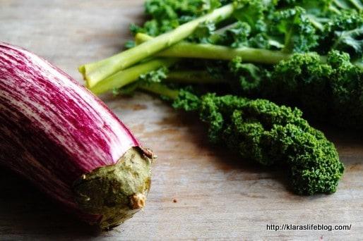 Pflanzen basierte Ernährung – Interview Serie Teil 2