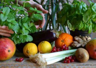 Pflanzen basierte Ernährung – Interview Serie Teil 1