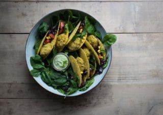 Falafel Tacos und Broste Salatschüssel Gewinn!