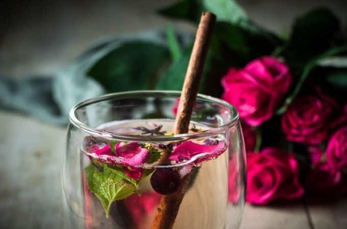 Hallo Molly – mit Tree of Tee und bunten Eiswürfeln durch den Sommer