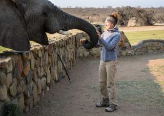 Afrika Safari Urlaub | Erlebnisse aus Südafrika und Namibia