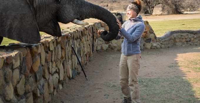 Afrika Safari Urlaub   Erlebnisse aus Südafrika und Namibia